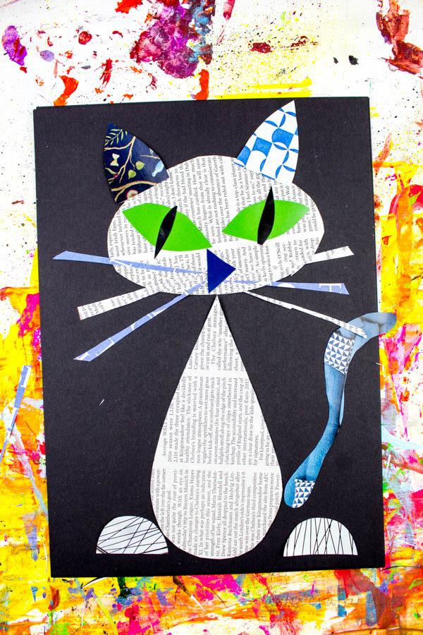 cool-cat-1-1368299