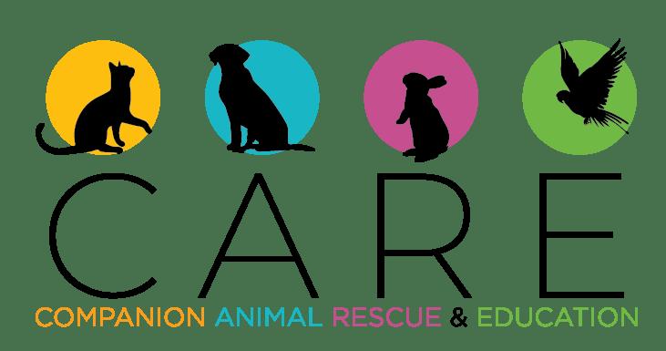 companion-animal-rescue-education-care-7491843