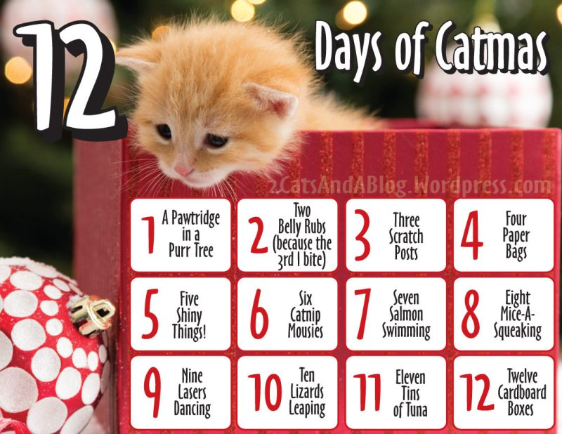 12-days-of-catmas-printable-9484797