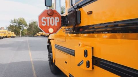 Forget Red Light Cameras ... Now there's School Bus Cameras. Virginia Beach, VA has installed School Bus cameras on their school buses to catch illegally passing motorist. These cameras are very similar to the red light cameras and speed cameras.