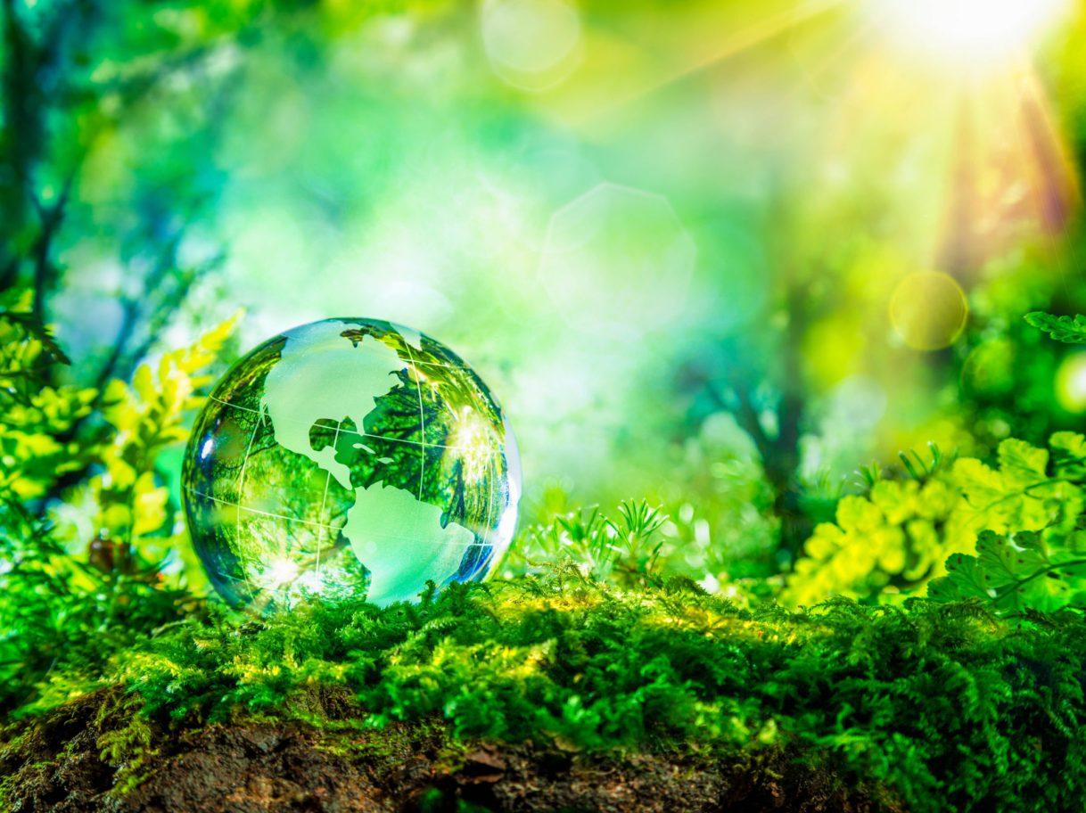 Meaningful, fun ways to celebrate Earth Day
