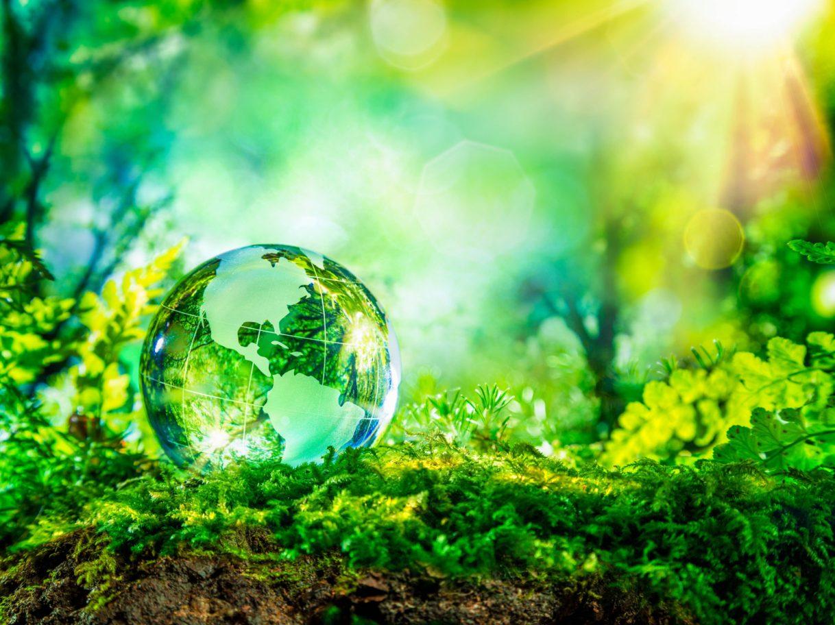 Meaningful, fun ways to celebrate Earth Day