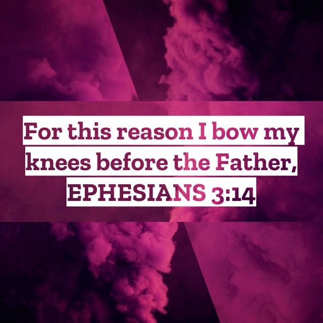 VOTD July 7, 2019 - For this reason I bow my knees before the Father, EPHESIANS‬ ‭3:14‬ ‭NASB‬‬