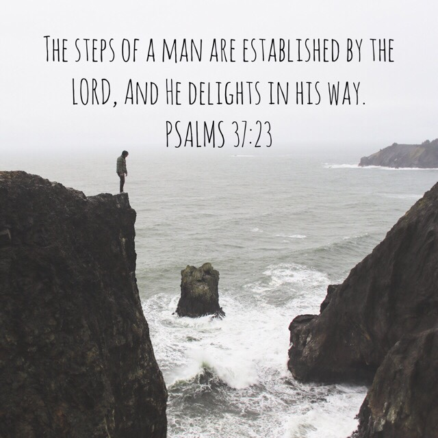 VOTD July 17, 2019 - The steps of a man are established by the LORD, And He delights in his way. PSALM 37:23 NASB