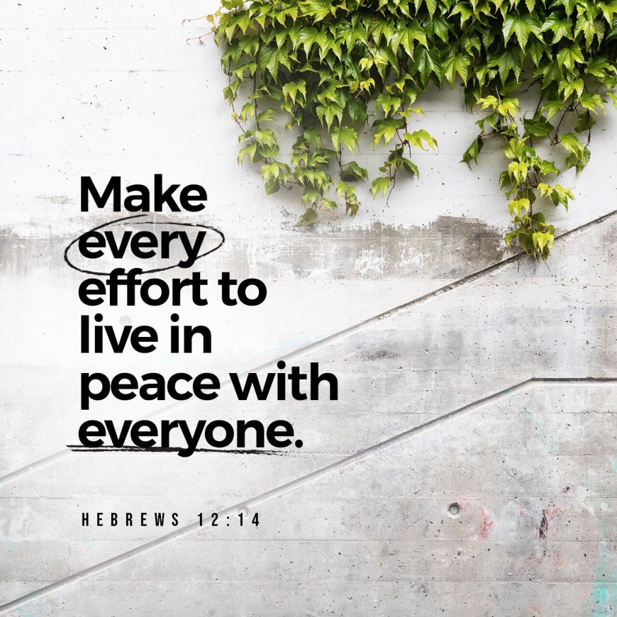 VOTD July 25 - Pursue peace with all men, and the sanctification without which no one will see the Lord. Hebrews‬ ‭12:14‬ ‭NASB‬‬
