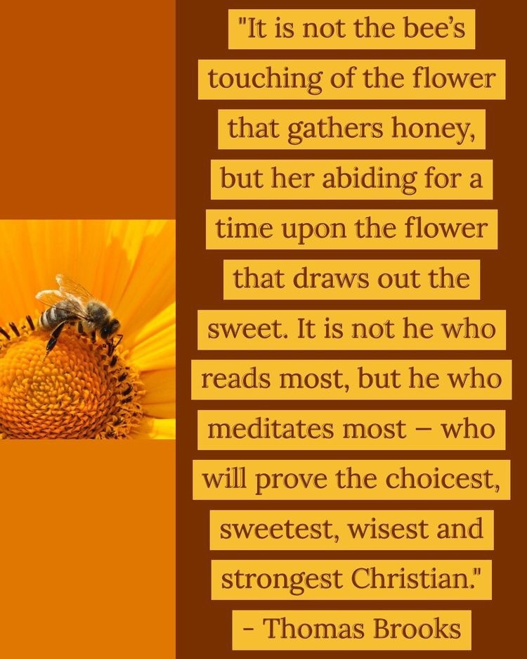 It's not the bee's touching quote