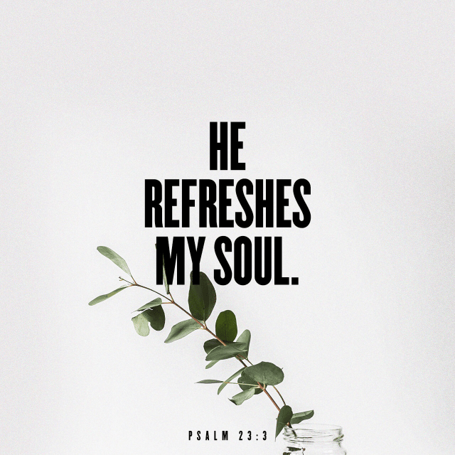 """VOTD October 23 - """"He restores my soul; He guides me in the paths of righteousness For His name's sake."""" Psalm 23:3"""