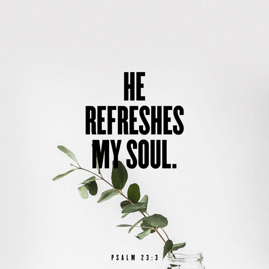"VOTD October 23 - ""He restores my soul; He guides me in the paths of righteousness For His name's sake."" Psalm 23:3"