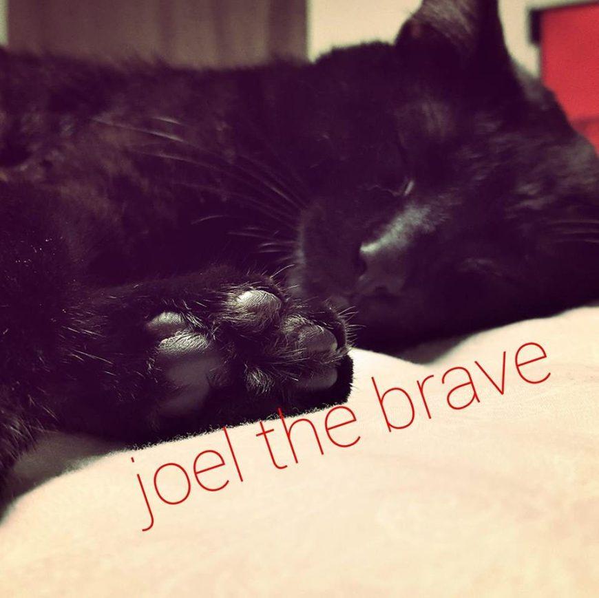 joel-the-brave-3716890