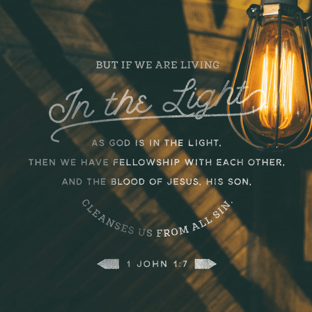 """VOTD December 26 - """"But if we walk in the Light as He Himself is in the Light, we have fellowship with one another, and the blood of Jesus His Son cleanses us from all sin."""" 1 John 1:7 NASB"""