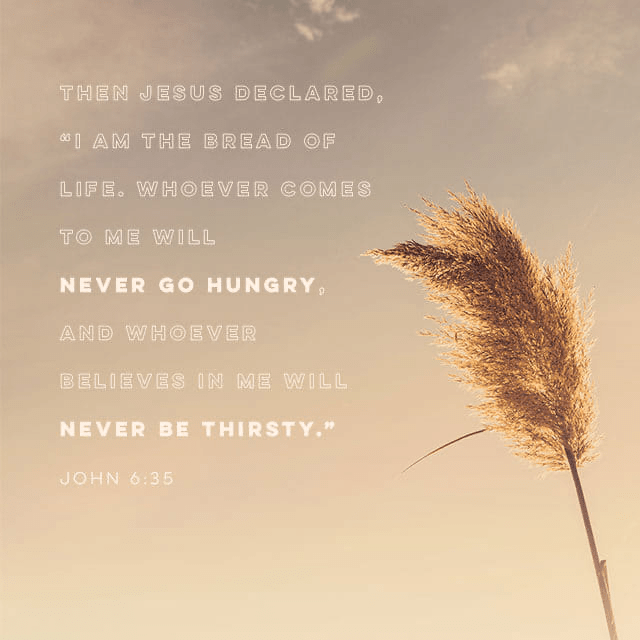 """VOTD January 23 - """"Jesus said to them, """"I am the bread of life; he who comes to Me will not hunger, and he who believes in Me will never thirst."""" John 6:35 NASB"""