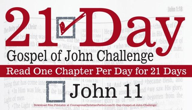 John 11 - This is Day 11 of the 21 Day Gospel of John Challenge. Read the 11th Chapter of Gospel of John. #John11 #Bgb2