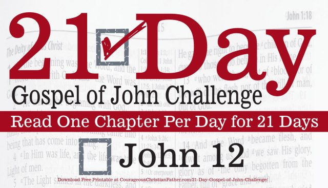 John 12 - Today is Day 12 of the 21 Day Gospel of John Challenge. So ready the 12th chapter in the Gospel of John. #John12 #bgbg2