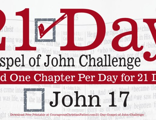 John 17 - Today is Day 17 of the 21 Day Gospel of John Challenge. Today read the 17th Chapter of the Gospel of John. #John17 #BGBG2