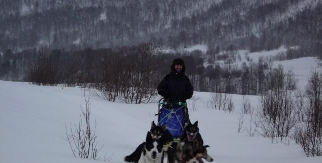 Nicolas mauclert chien de traineau