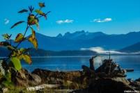 Le beau soleil réveil la nature figée par la fraîcheur nocturne et offre une vue imprenable sur les sommets enneigés de la chaîne côtière et ses énormes glaciers
