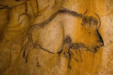 bison-peinture-animee-grotte-chauvet-caverne-pont-arc