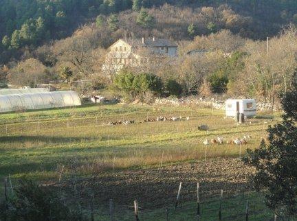 mas-des-buissieres-515_None.JPG.670x500_q85_crop