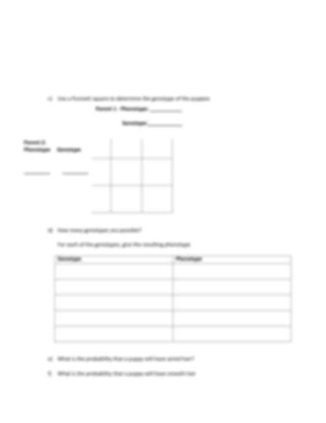 Inheritance Worksheet 1