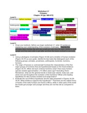 Worksheet 17