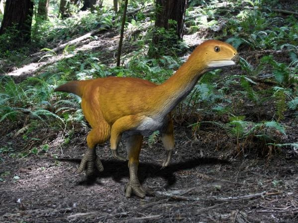 The Bizarre Chilesaurus Is Now Considered A