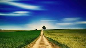 country road, dirt road