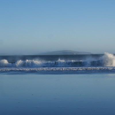 Bodega-Waves.jpg?resize=400%2C400