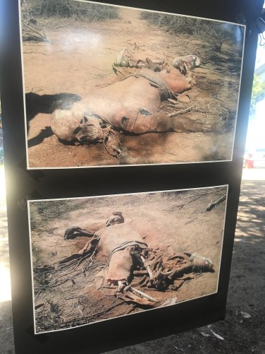Images by border search-and-rescue group Aguilas Del Desierto show injuries suffered by people attempting to cross the U.S.-Mexico border illegally in the desert. In 70% of its missions, the group collects the remains of people who died in the attempt. (Bianca Bruno / CNS)