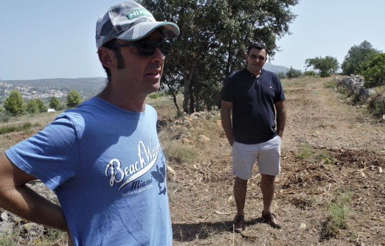 Elias Andres (left) and Faustino Mestre, almond farmers in Spain's Alicante province, stand in a field where about 300 almond trees were cut down as part of efforts to contain a lethal plant disease called Xylella fastidiosa. The disease is killing almond trees in Spain and olive trees in Italy. The bacterium is considered one of the most dangerous threats to Europe's crops. (Photo by CAIN BURDEAU/Courthouse News Service)