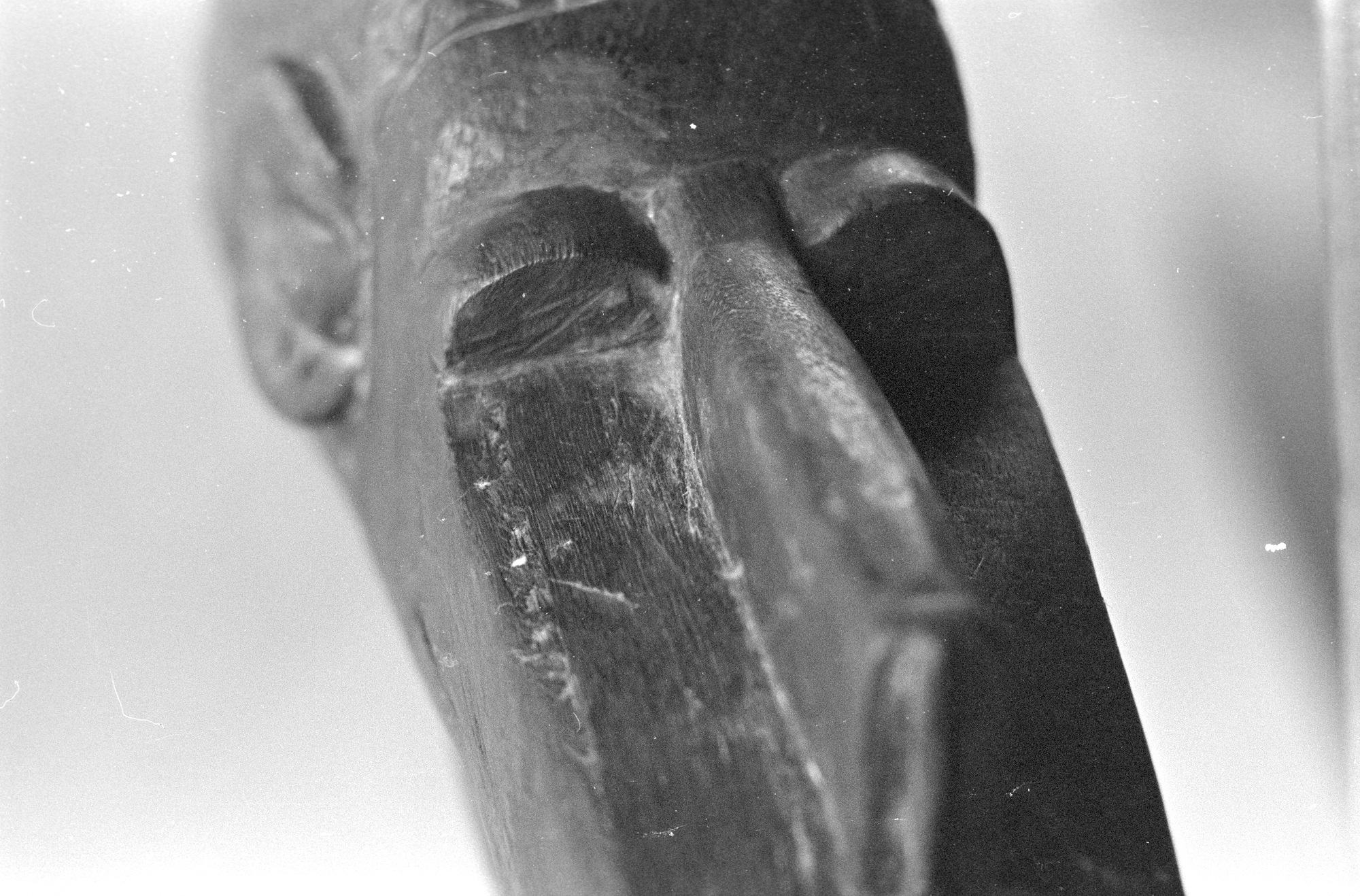 Closeup from Walt Girdner's collection of African masks and statues.