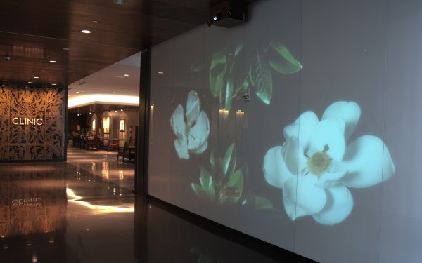 Interactive flowers in the University Medical Center lobby