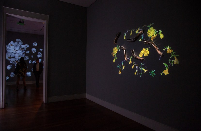 "installation view of ""Virtual Idylls"""