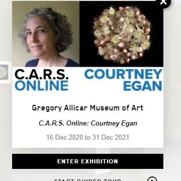 Colorado State University's Gregory Allicar Museum of Art invited me to select work from their collection to display along side my artwork. I created a new piece for this show, Extinct in the Wild, about the relationship between human and plant world.