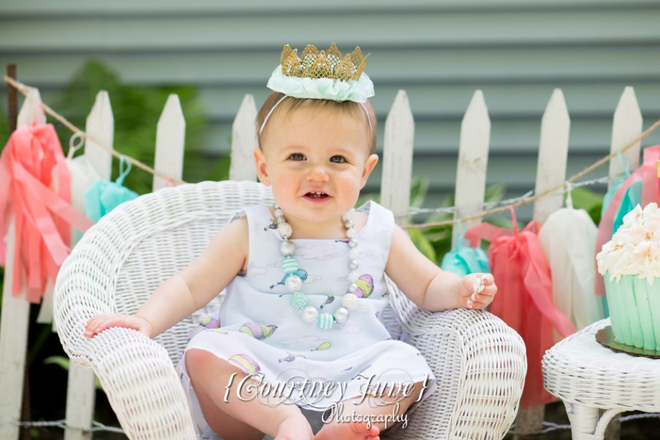 first-birthday-party-dr-suess-minneapolis-family-photographer-first-birthday-photographer-15