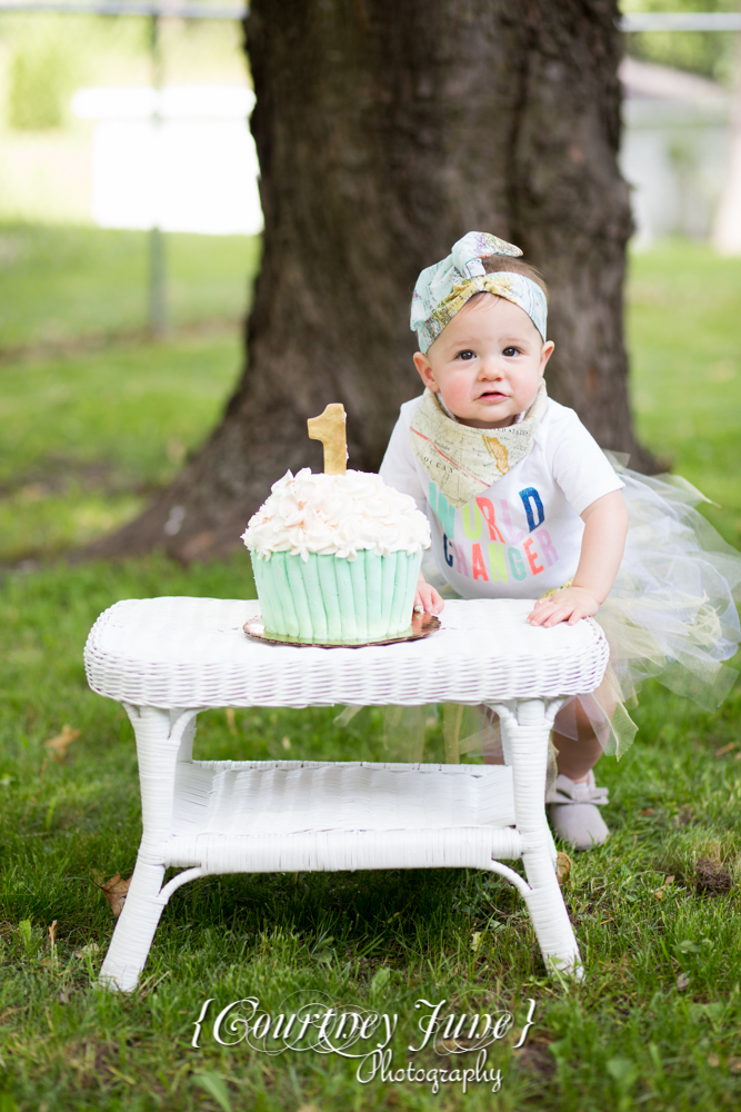 first-birthday-party-dr-suess-minneapolis-family-photographer-first-birthday-photographer-35