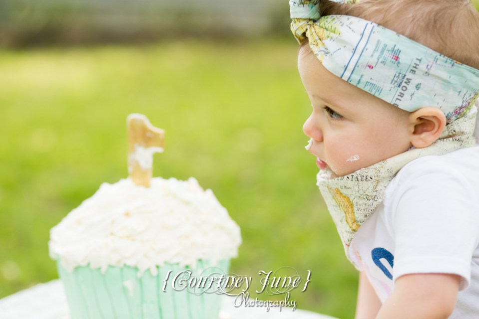 first-birthday-party-dr-suess-minneapolis-family-photographer-first-birthday-photographer-37