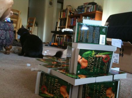 Picture of Courtney Milan's attack cat and book fortress
