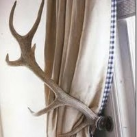 Bringing the Wild Inside: Accessorizing with Antlers