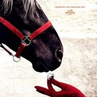 Equestrian Chic = Luxury Branding
