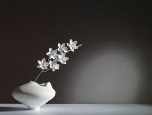 Cymbidium Ming Vase, lighting as art, Jeremy Cole art