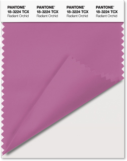 Panetone Color of the year swatch-card
