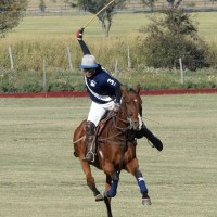 A Civilized Day of Polo...