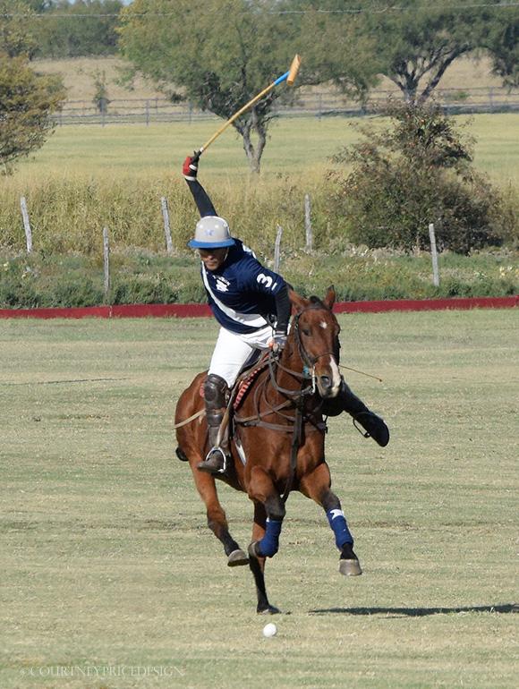 Dallas Polo on www.CourtneyPrice.com