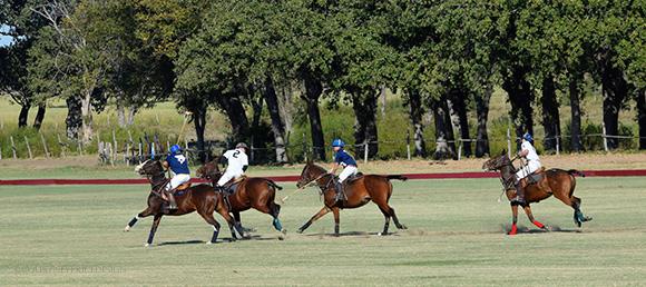 polo on www.CourtneyPrice.com