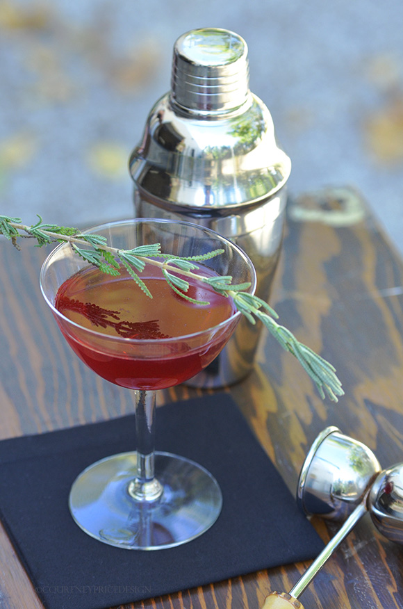 Holiday Cocktail- and PHOTO TIPS on www.CourtneyPrice.com