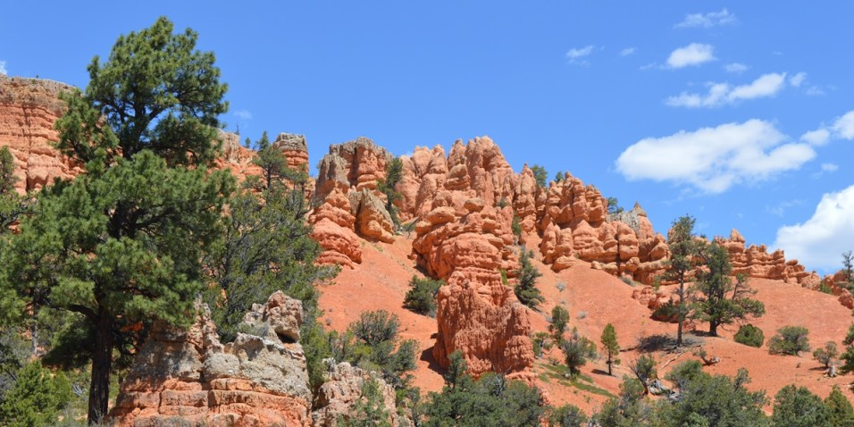 Red Canyon - more Hoodoos