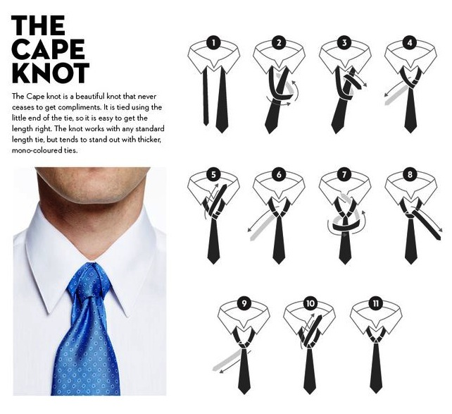 cape-knot-infographic image