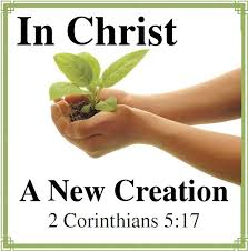 Sermon for April 19, 2015: The New Creation