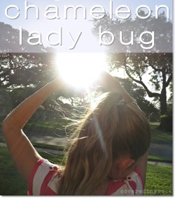 the chameleon lady bug