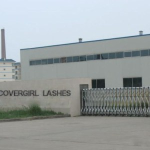 Covergirl Mink Lashes Factory